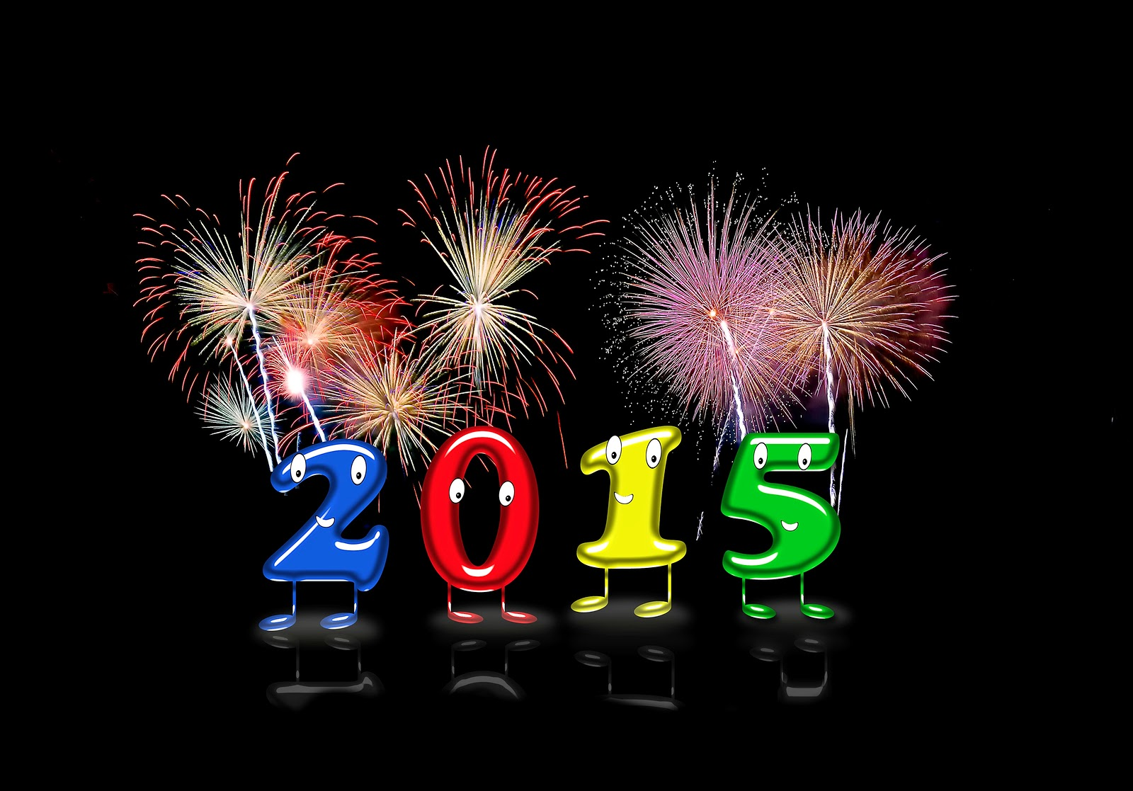 Goodbye 2014..Welcome 2015!